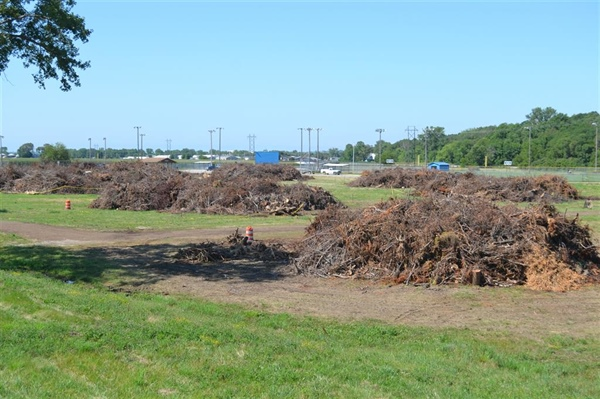 City Continues Storm Cleanup Efforts